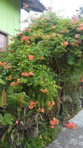 A garden outside Casa Rústica - Hospedaria