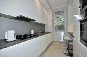 Kuchnia lub aneks kuchenny w obiekcie Apartament Retoryka WAWELOFTS