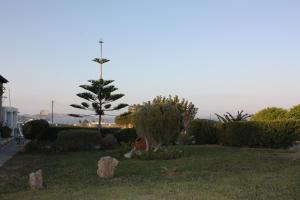 A garden outside Bungalows Cosmarie