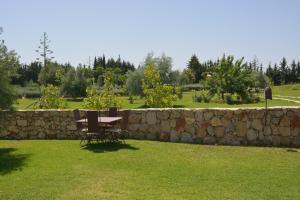A garden outside Riad le Ksar de Fes