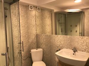 A bathroom at Pensiunea Otopeni