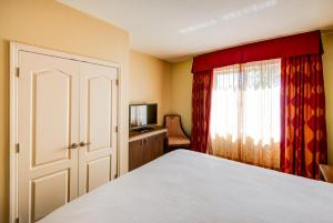 A bed or beds in a room at Hilton Garden Inn Tampa Ybor Historic District