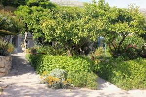 A garden outside Apartments with a parking space Mlini, Dubrovnik - 8985