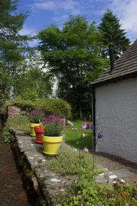 A garden outside Druminoch