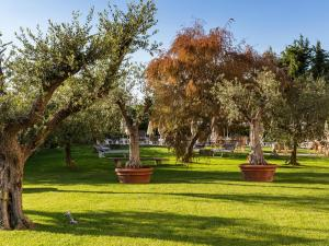 A garden outside Hotel Ca' Mura