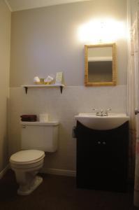 A bathroom at Capricorn Motel Royale 1000 Islands