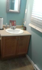 A bathroom at Cozy pet friendly Home