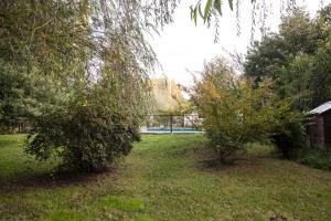 A garden outside Cabañas Aguas Claras