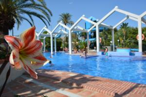 The swimming pool at or near Benal Beach Apartment