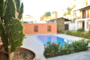 A piscina localizada em Oxente Travel Apart Hotel ou nos arredores