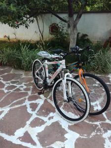 Biking at or in the surroundings of Hadjibulevata Guest House