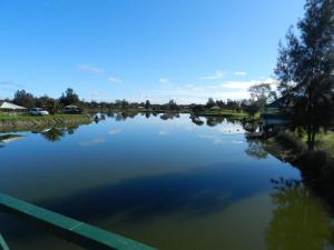 The swimming pool at or near Golden Ponds
