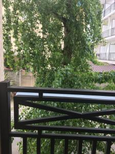 Балкон или терраса в Апартаменты 5 минут от моря рядом с олимпийским парком