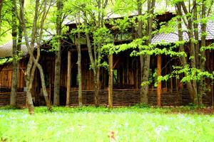 Сад в Этно-Парк «Усадьба Рыбацкое»