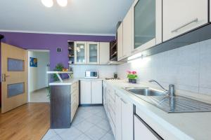 A kitchen or kitchenette at Apartments with a parking space Buici, Dubrovnik - 12987