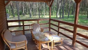 Balkon lub taras w obiekcie Domki w Sosnowym Lesie