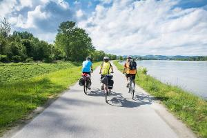 Biking at or in the surroundings of B&B Casa20 Dieburg