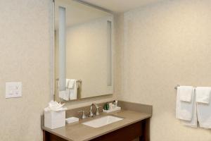 A bathroom at Hilton Niagara Falls/ Fallsview Hotel and Suites