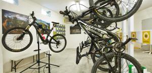 Montar en bicicleta en Hostal Dos Rios o alrededores
