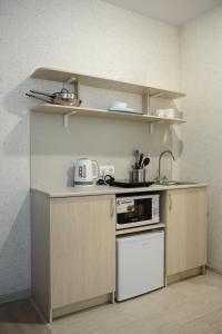 Кухня или мини-кухня в Ruzoff Apart by Solaren