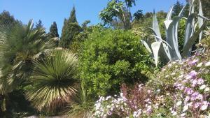 A garden outside Le Clos fleuri