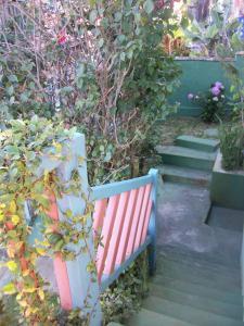 A garden outside Chales das Andorinhas
