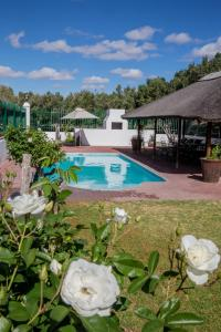 The swimming pool at or close to Olive Grove Guest Farm