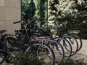 Biking at or in the surroundings of Mauritzhof Hotel Münster