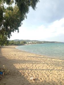 Παραλία σε ή κοντά σε αυτή η παραθεριστική κατοικία