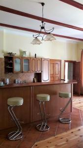 Kuchnia lub aneks kuchenny w obiekcie Madera Mansion Wilczkowo