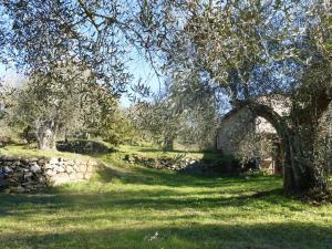 Giardino di Podere di Maggio - Casa Olivi