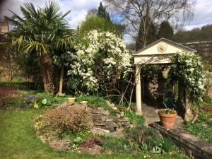 A garden outside Dolphin House