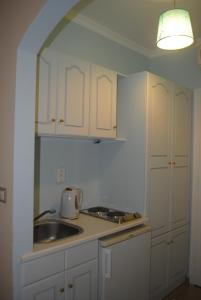 A kitchen or kitchenette at Apollonia Hotel