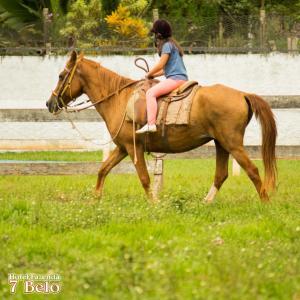 Passeio a cavalo no hotel-fazenda rural ou nos arredores