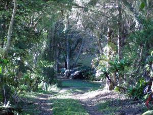 Um jardim em Ecopousada João Y Maria