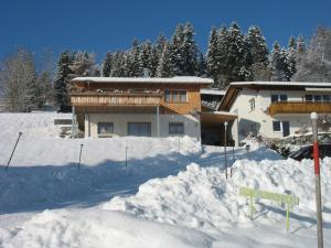 Haus Lenzhalde during the winter
