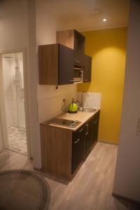 Küche/Küchenzeile in der Unterkunft ApartmentHotel Vollumen