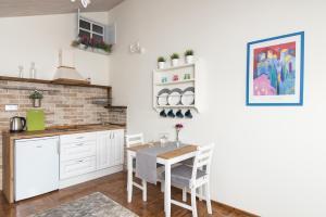 Kuchnia lub aneks kuchenny w obiekcie Apartamenty Chopina 46