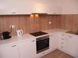 A kitchen or kitchenette at Elegant Apartment Miletičova