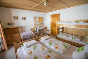 A bunk bed or bunk beds in a room at Hof Hamoos