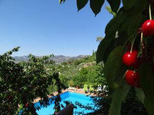 Vista de la piscina de Apartamentos Arroyo Parrilla o alrededores