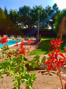 Сад в Hotel Celnice