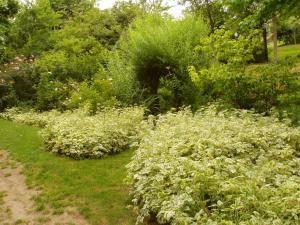 A garden outside Chambres d'Hotes la Belle Taille