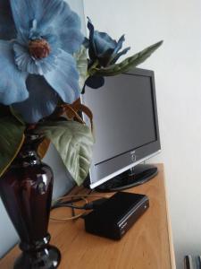 TV a/nebo společenská místnost v ubytování Rodinný Penzion Karin