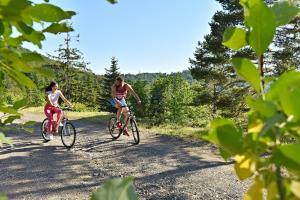 Biking at or in the surroundings of Hotel Hajducke Vode