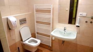 Een badkamer bij Apartments U Labuti