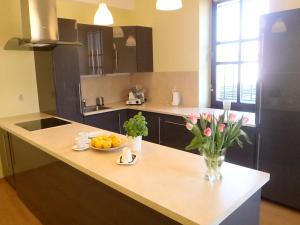 Kuchnia lub aneks kuchenny w obiekcie Apartamenty Przy Parku