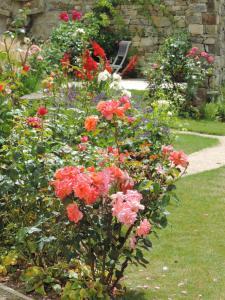 A garden outside Le Clos du Presbytere