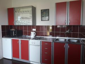Kuhinja ili čajna kuhinja u objektu Apartment Stipčić-Mrežnički Brig