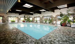The swimming pool at or near Marmot Lodge Jasper